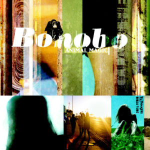 Bonobo – Animal Magic – 2LP (Yellow Vinyl)